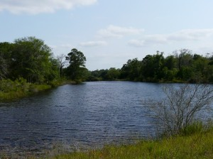 Deerwood Lakes has beautiful lakes for fishing